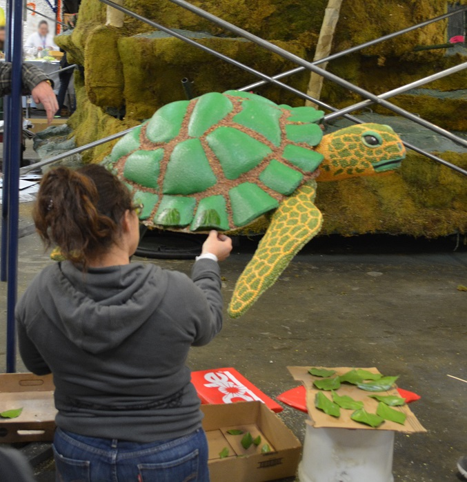 creating a turtle