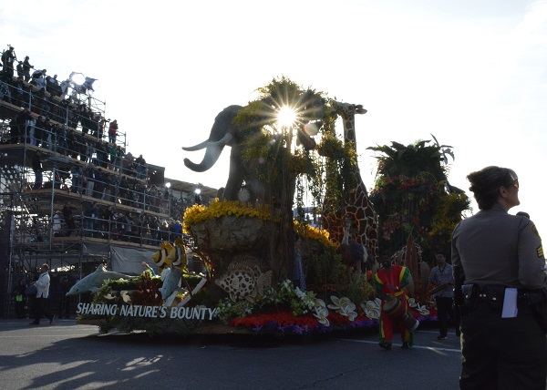 Dole float with elephant and giraffe approaches Colorado Boulevard